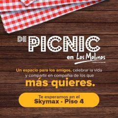 Post_PicnicEnLosMolinos